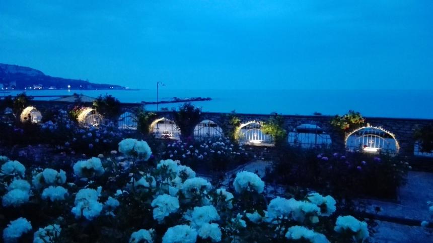 gardens at night